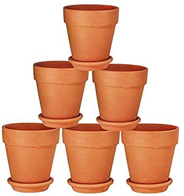 Buy Clay Pots